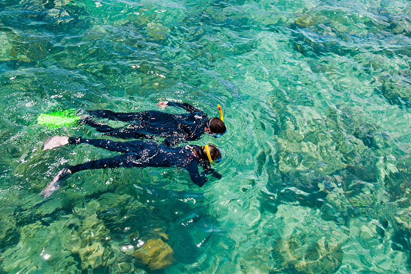 Full face snorkel masks and its facts