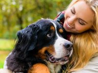 pet sitter pineville la