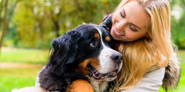 Advantages And Duties Of a Pet Sitter